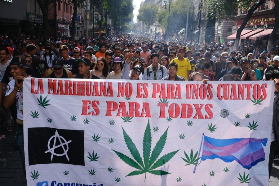 Regulación de marihuana no se ha tratado, pero si el Congreso la aprueba lo acataremos: AMLO