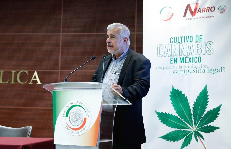 Regulación del cannabis favorecerá el desarrollo económico del campo