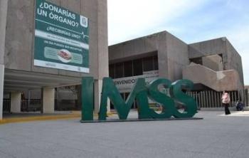 Aumentan puestos de trabajo en septiembre, reporta IMSS
