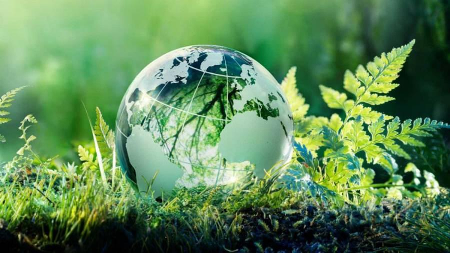 Delincuencia ambiental, preponderante mal que acecha al mundo