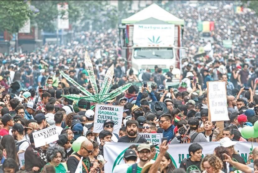 """Aplazan la regulación de la mariguana por """"razones de Estado"""""""