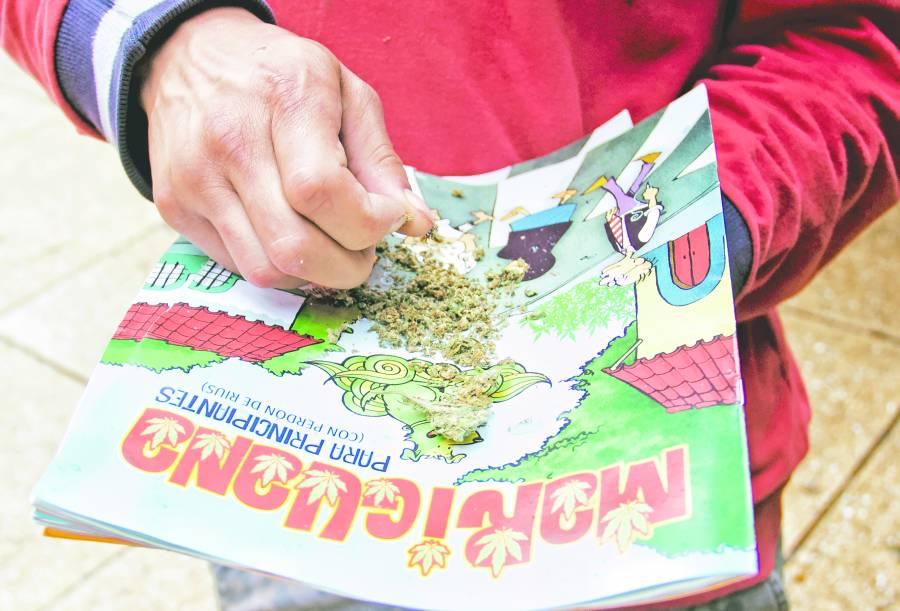 ONG señala deficiencias en predictamen de Cannabis
