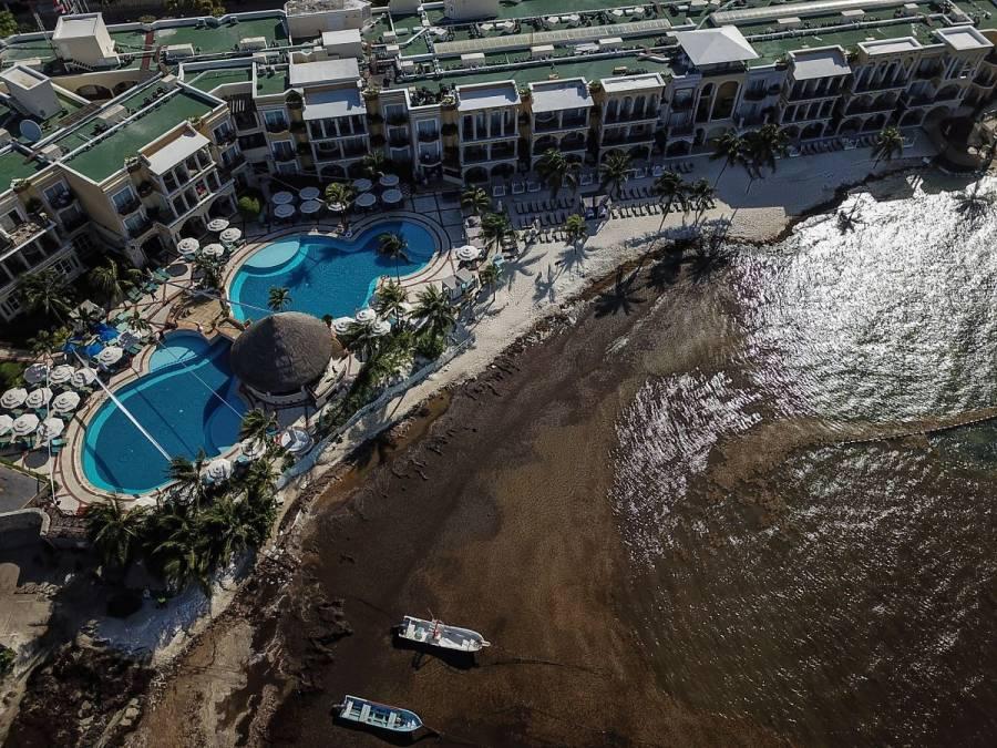 Así se ven desde el espacio la zonas afectadas por sargazo en México