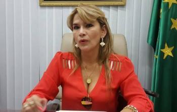 Senadora opositora asumiría Gobierno tras renuncia de Morales en Bolivia
