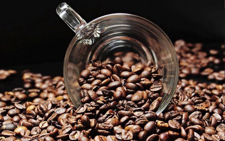 Entrada ilegal de café hondureño a México abarata la producción nacional