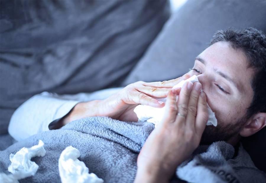 Dieta alta en grasas ayudaría a combatir el virus de la influenza