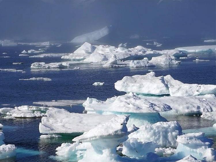 Hielo marino en el Ártico desaparecería en 25 años