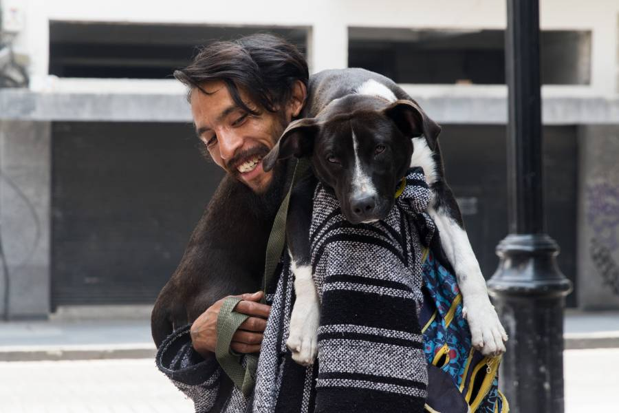 Marchan contra la iniciativa de impuesto de tenencia de mascotas