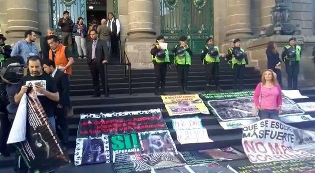Grupos animalistas apoyan afuera del congreso ley contra tráfico ilegal de animales