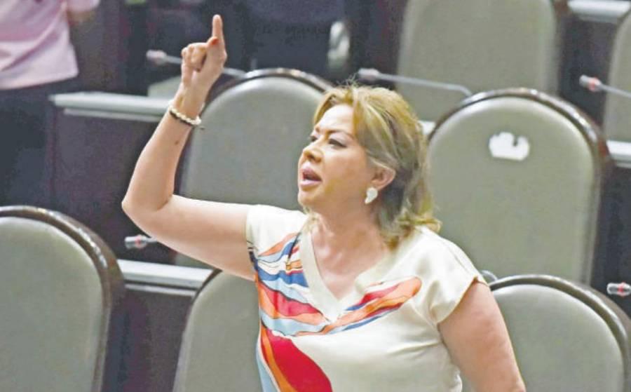 Diputados federales acusan a Almaguer Pardo, por actitud agresiva