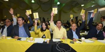 Renovaría dirigencia nacional el PRD en abril y busca apoyo del INE
