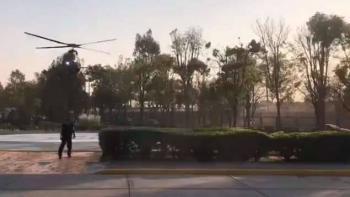 Ataca perro a madre e hijo cerca del Jardín Botánico de la UNAM
