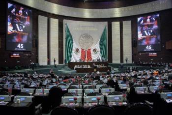 Diputados aprueban creación de la Medalla Francisco Toledo