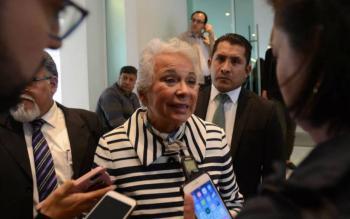 Embajador en Argentina y Sánchez Cordero viajan en mismo vuelo a México