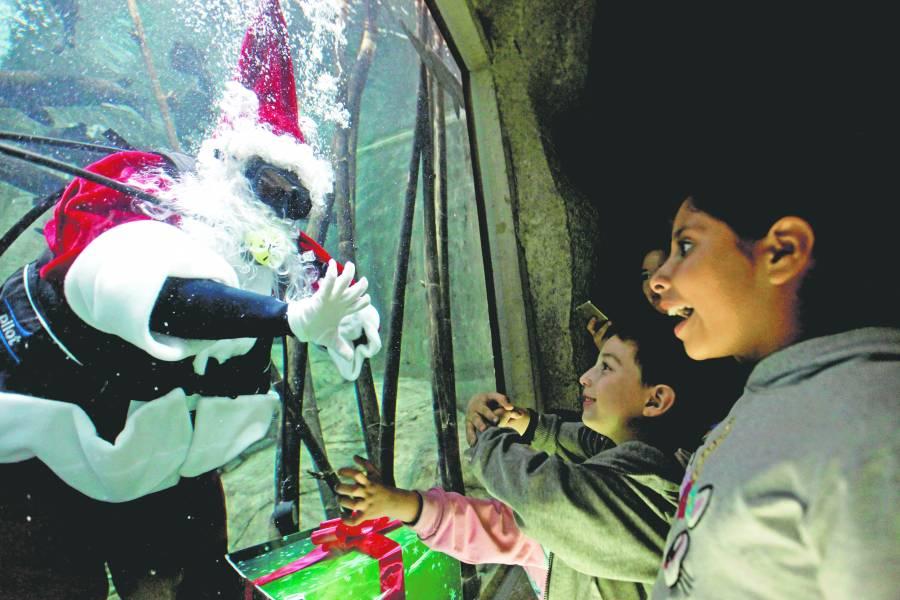 Papa Noel deslumbra en acuario de Guadalajara.