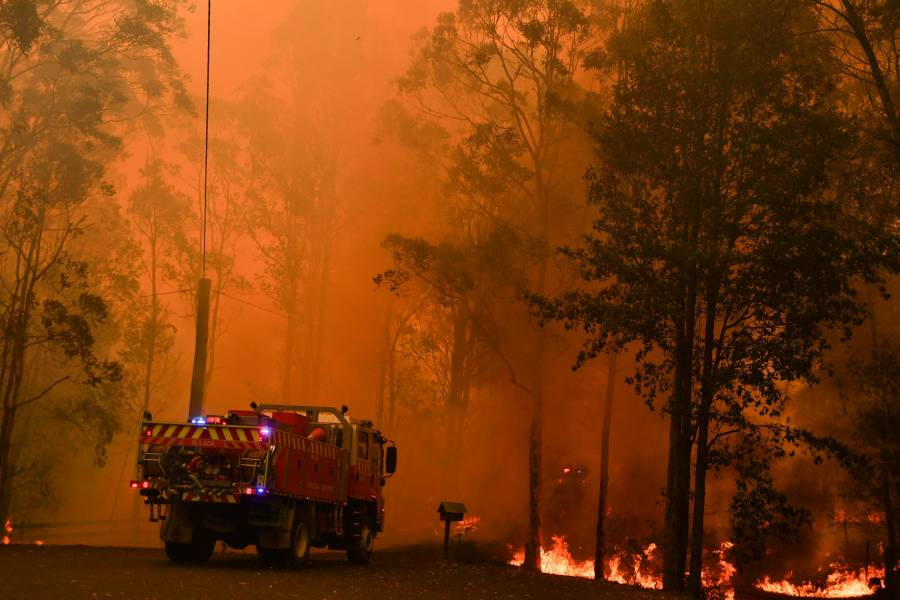 Enfrenta Sydney emergencia de salud pública por humo tóxico