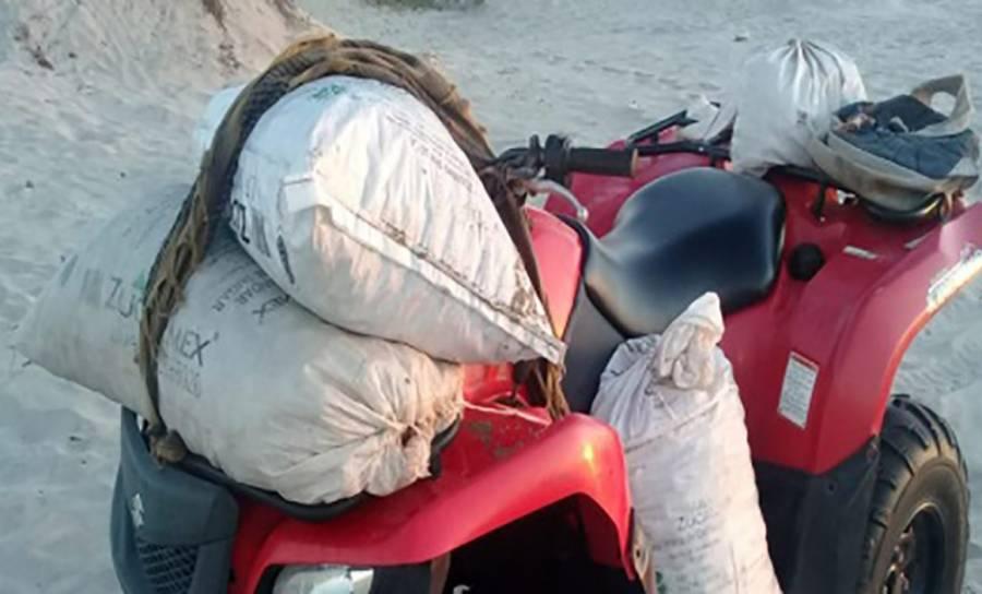 Localiza Profepa 6 mil huevos de tortuga abandonados en playa de Oaxaca