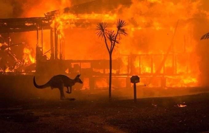 23 muertos y 1,500 casas destruidas dejan incendios en Australia