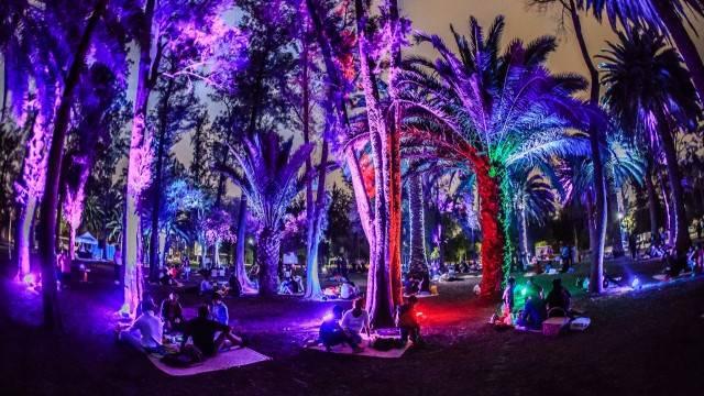 Llega el primer picnic nocturno al Bosque de Chapultepec
