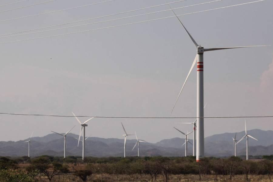 Confirman revisión de contratos a empresas de energías renovables
