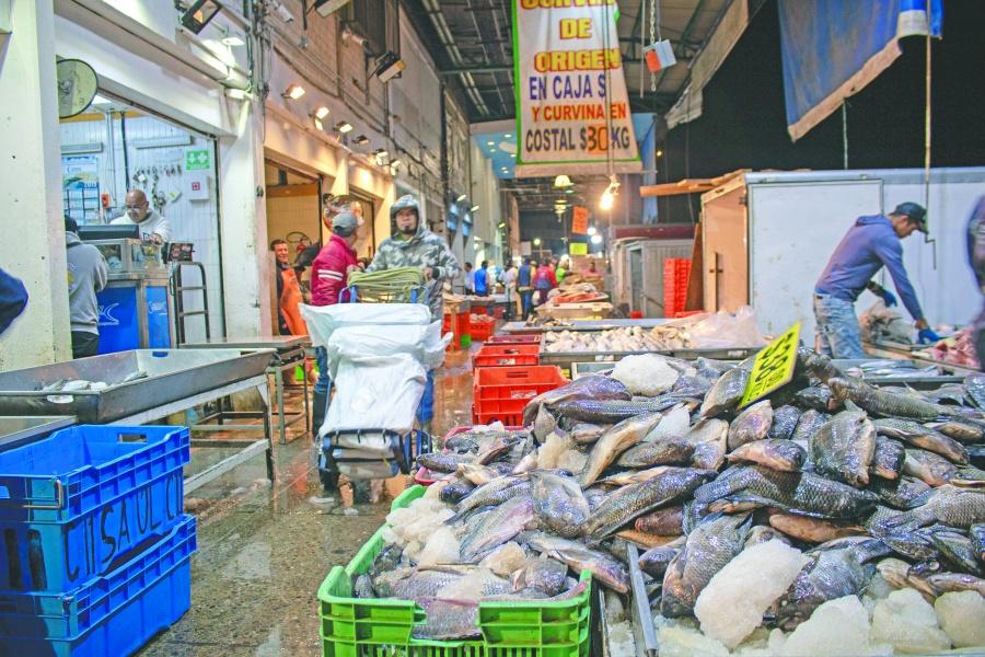 En 2019 Retienen de La Viga mil toneladas de pescado