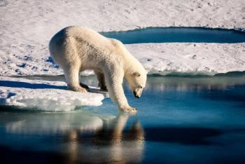 Vida en el planeta depende de medio grado de temperatura