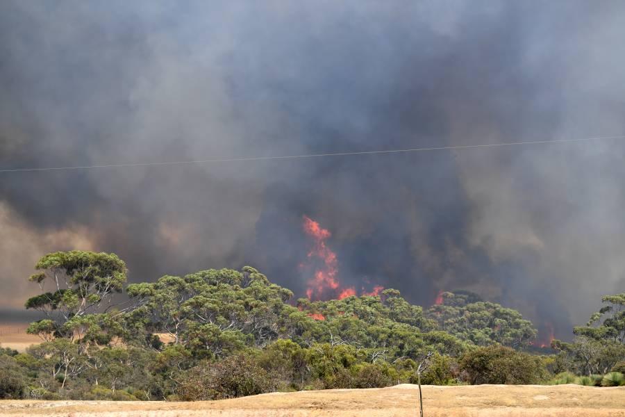 México y varios países lamentan incendios en Australia
