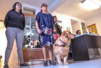 Capacitan a 100 oficiales del Senasica en derechos humanos