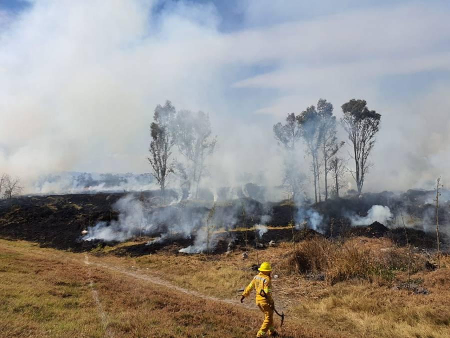 Sin lesionados incendio en la Ciénega Grande de Xochimilco