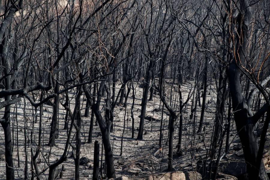 Australia en nuevo riesgo de calor y fuego