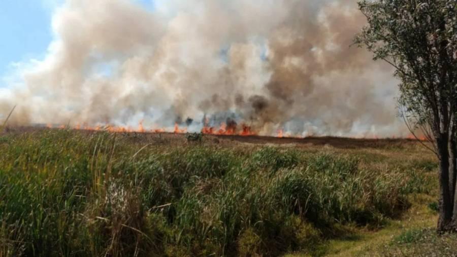 Reportan incendio en pastizales de Xochimilco