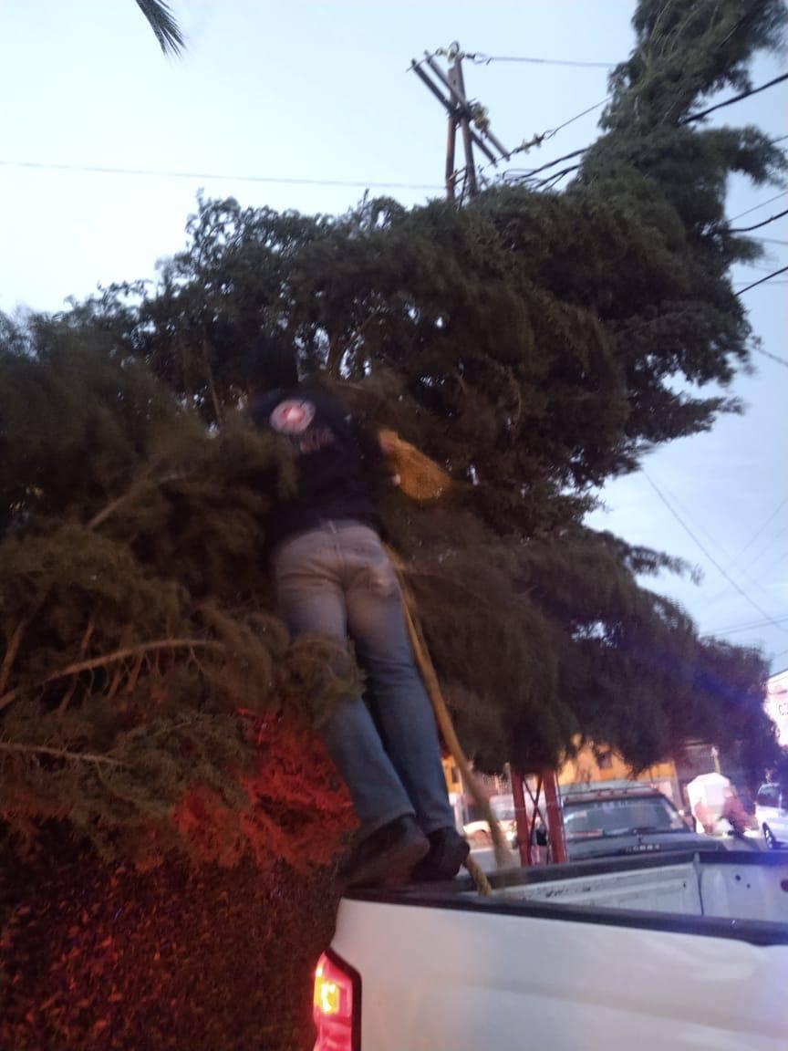 Atienden en Soledad, SLP reportes relacionados con fuertes vientos