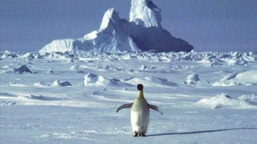 Registra La Antártida temperatura récord de 18.3 grados