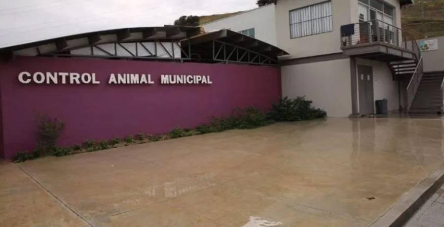 Inauguran clínica de mascotas gratuita en Tijuana