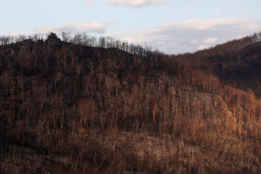 Australia contiene incendios forestales por primera vez desde septiembre