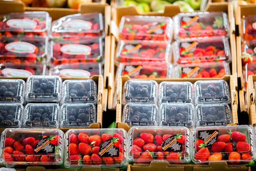 Cierra balanza agroalimentaria con nueve mil 091 mdd de superávit en 2019