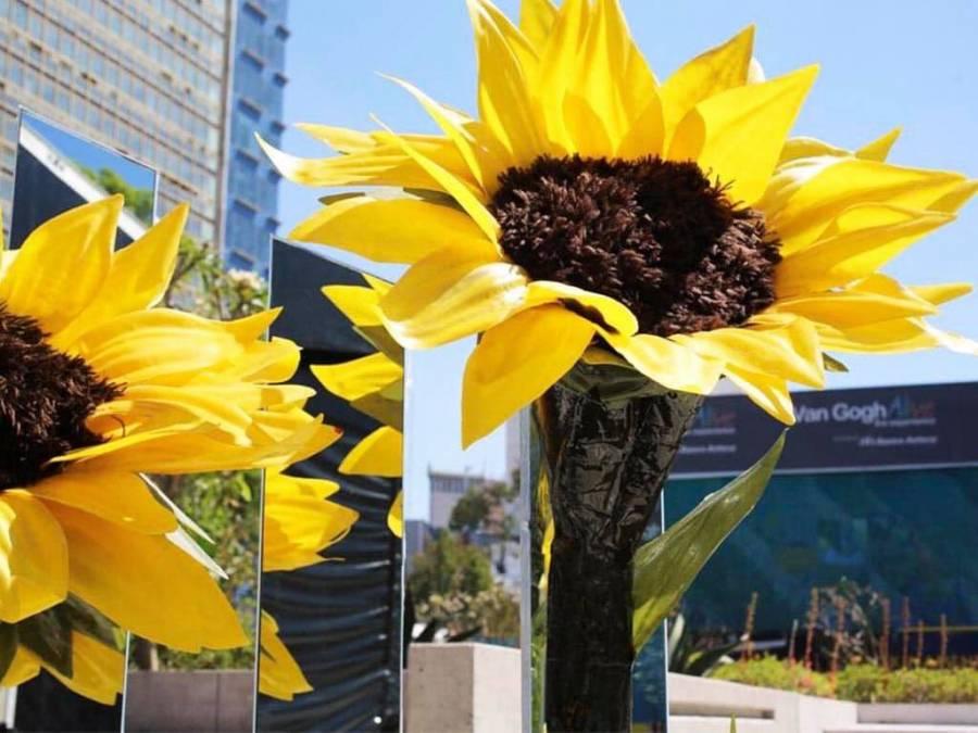 Regalan pases para asistir a Van Gogh Alive