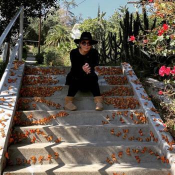 Monarca: Exposición de una artista mexicana que combina al arte y activismo 