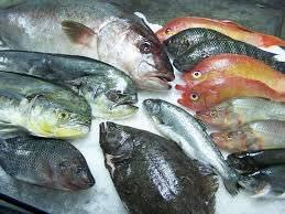 Diez supermercados que venden hielo a precio de pescado