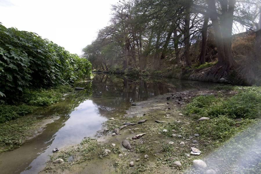 Hallan cuerpo de mujer en río Santa Catarina, NL