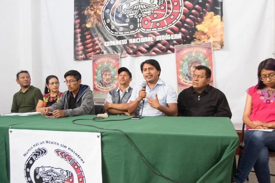 Suspenden Tren Maya, pero sólo en zona de Calakmul