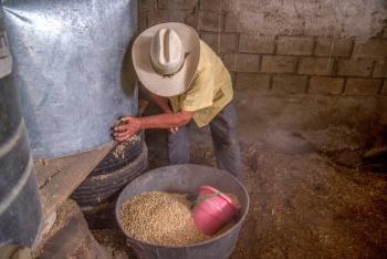 Entregan apoyos a 500 mil productores agrarios