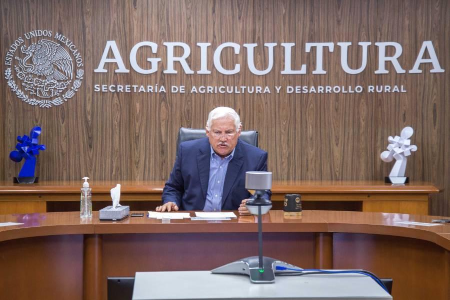 Se suma Agricultura a esfuerzos de FAO para mitigar efectos del COVID-19