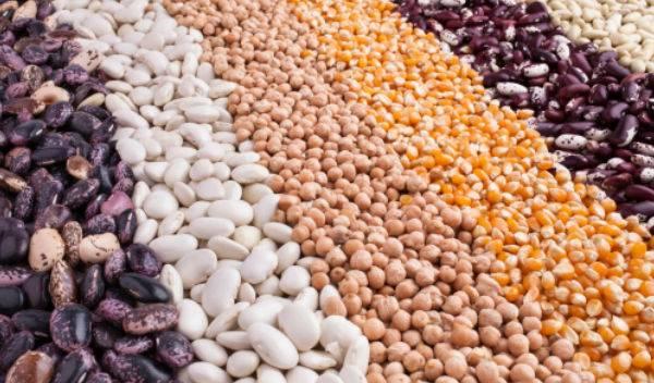 Advierte ONU que el mundo está al borde de una pandemia alimentaria