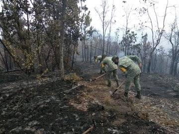 Por incendios SEDENA auxilia a seis estados