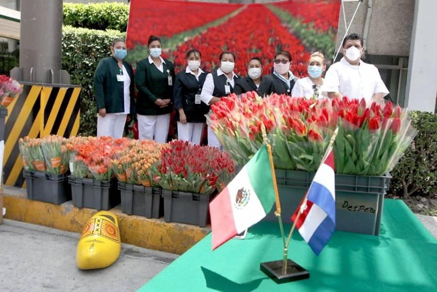 Países Bajos regala tulipanes al personal médico