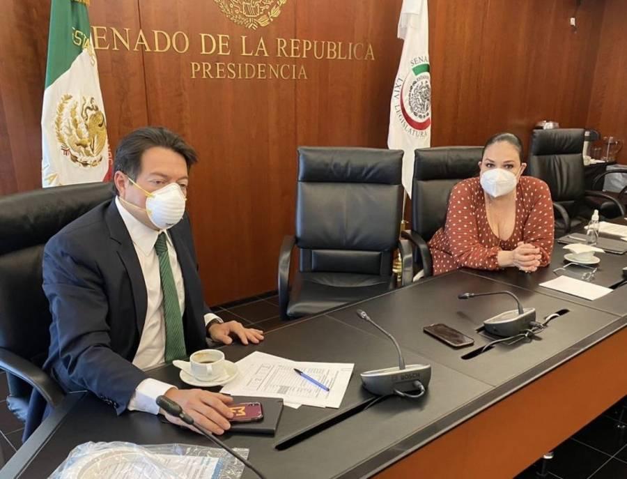 Llama Morena a legislar responsablemente sobre reasignaciones del presupuesto