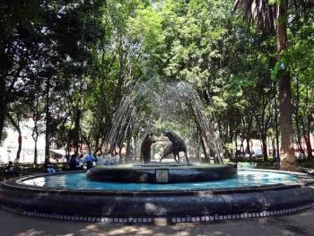 Denuncian peticiones de despensas en Coyoacán