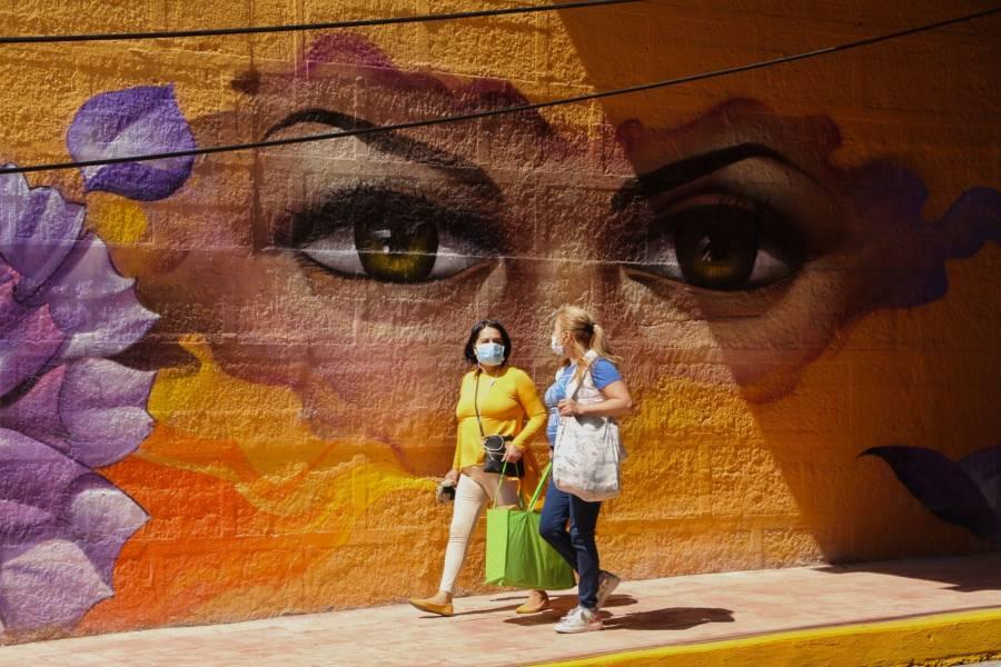ONG's solicitan claridad al Gobierno sobre protección a mujeres durante cuarentena