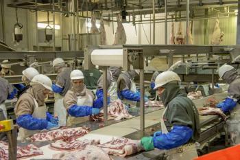 Crecen 7.8% exportaciones agropecuarias